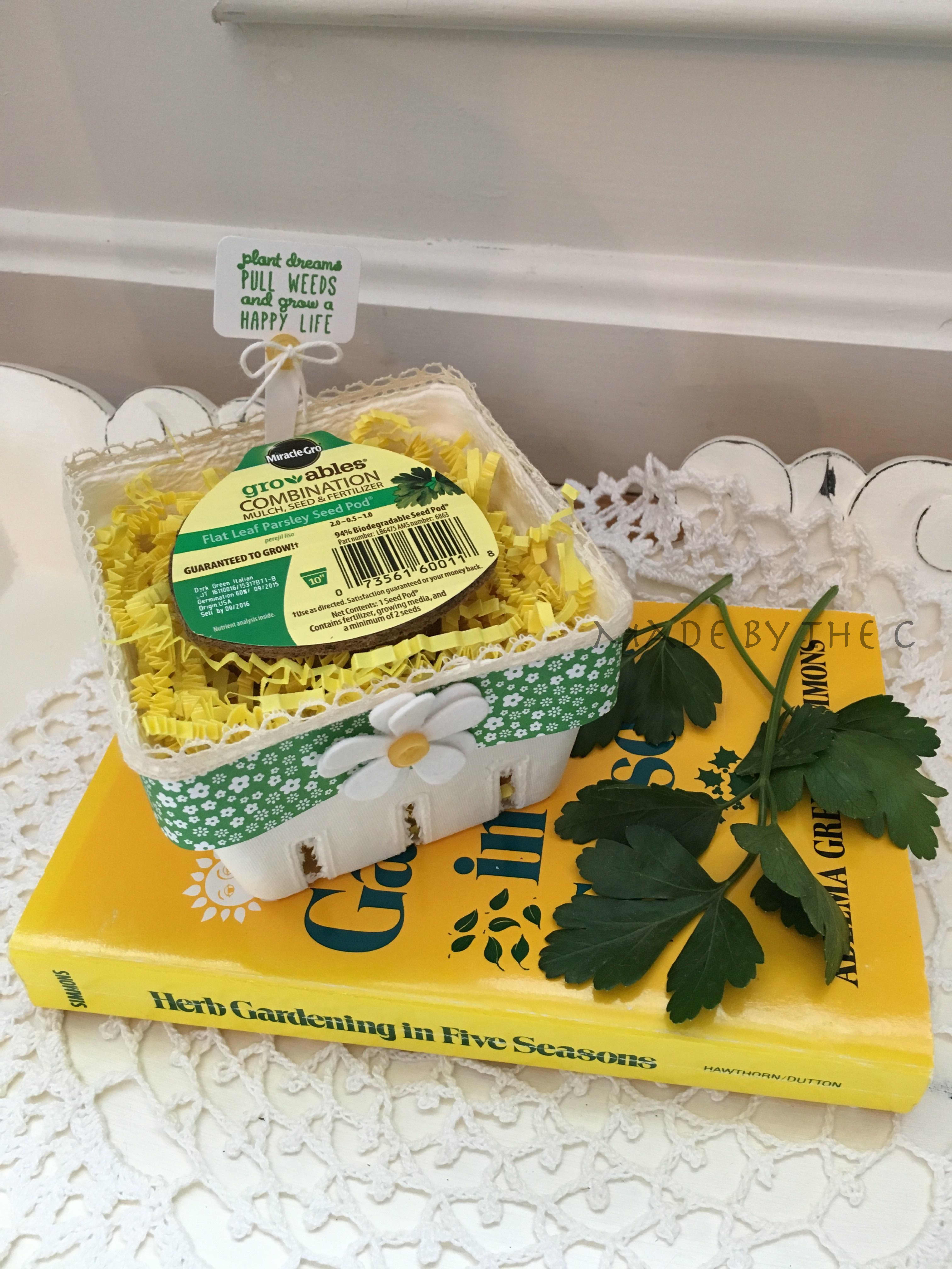 Finished seed pod packaging with yellow filler_1